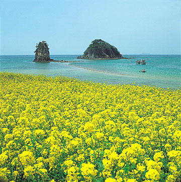 Jeju Island – Island of the Gods The Romantic and Paradise Island